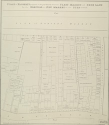 PLAN of PROPERTY proposed to be purchased between FLEET MARKET and SHOE LANE for the ERECTION of a NEW MARKET on the SITE thereof